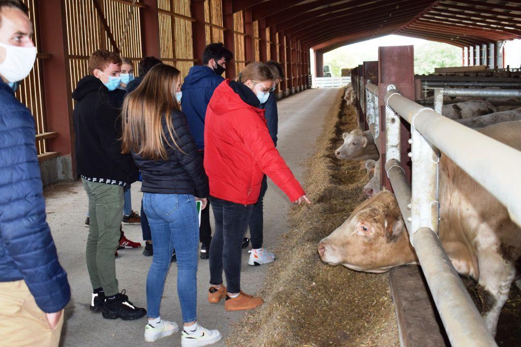 MFR Visite élevage